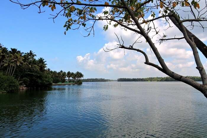 The serene view of the calm Paruvar Lake in Kerala