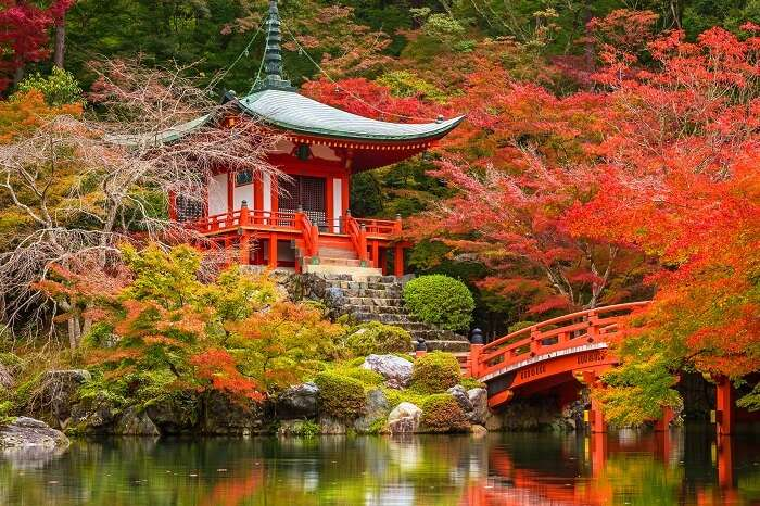 Daigo-ji temple with colorful maple trees in autumn in Kyoto
