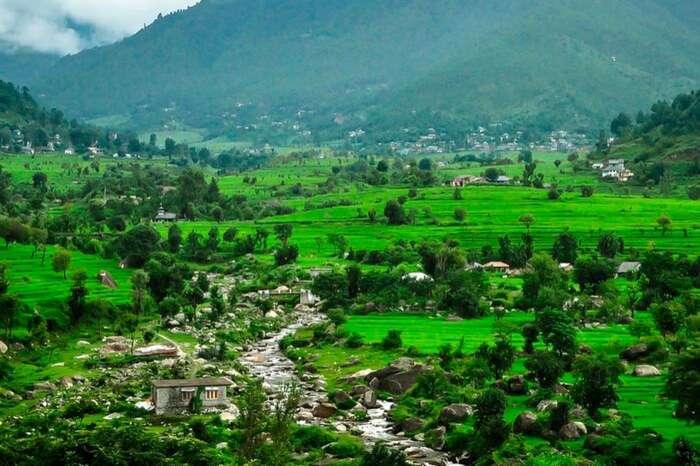 A lush green Karsog Valley near Mandi overlooked by mountains