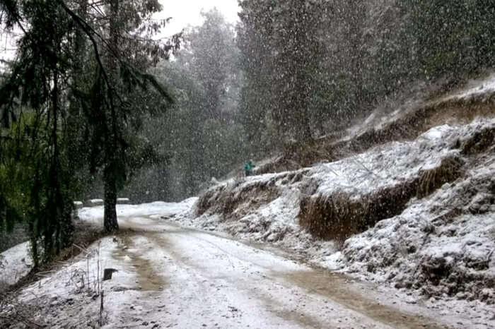 Road leading to Prashar Lake covered with snow