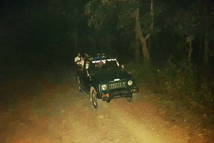Riding through the pitch black forest
