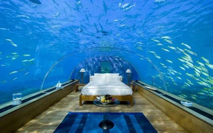 Room in Jules' Undersea Lodge