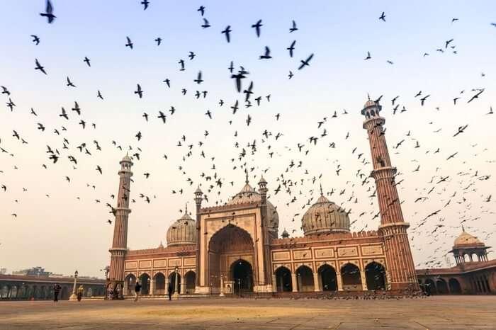 A flock of birds flying past Jama Masjid in Delhi