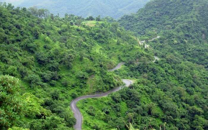 Road to Peora - trekking to this place is one of the favorites activities in Mukteshwar