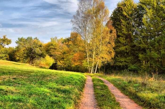 Hill Nature Trail