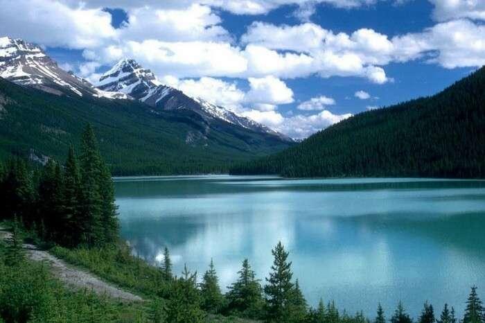 Greenery and mountains surrounding Dal Lake