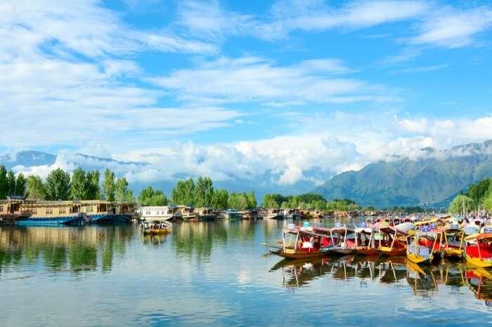 Shikaras in Dal Lake in Kashmir