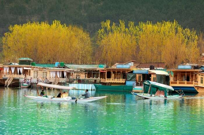 Dal Lake with lots of boats and shikaras sailing on a beautiful day