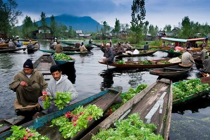 Flowers being sold on boats in Dal Lake in Kashmir