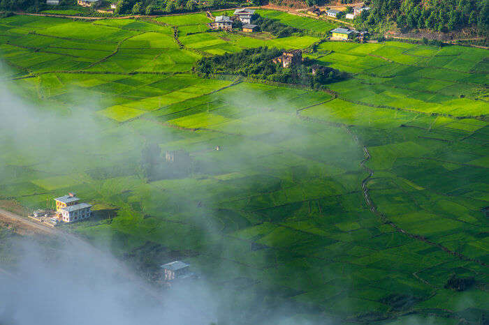Paddy fields and villages in Trashiyangtse