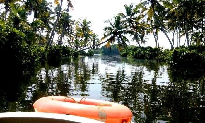 Around the backwaters of kerala
