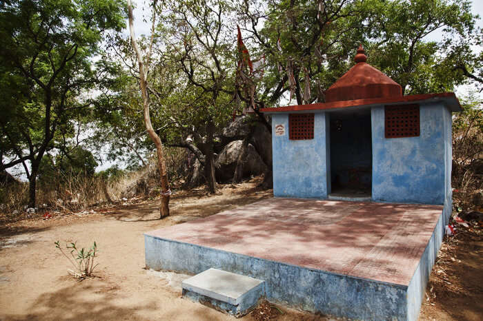 a small temple surrounded by trees