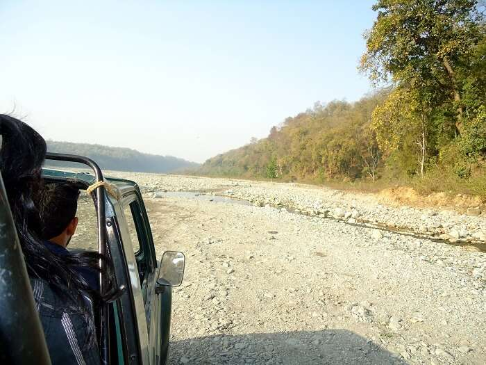 on the way to jungle safari