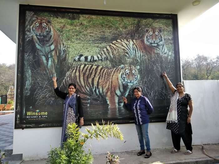 we saw the tigers