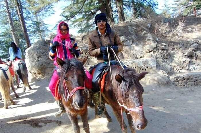 Horse ride kufri - D6