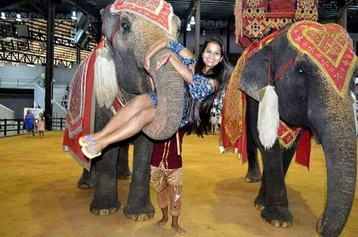 elephant show at nong nooch