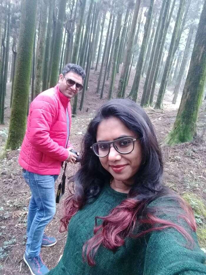 forests of darjeeling