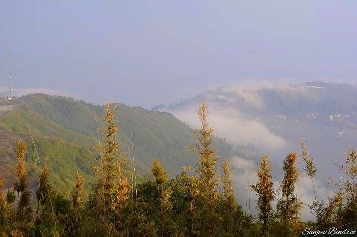 mountains of darjeeling