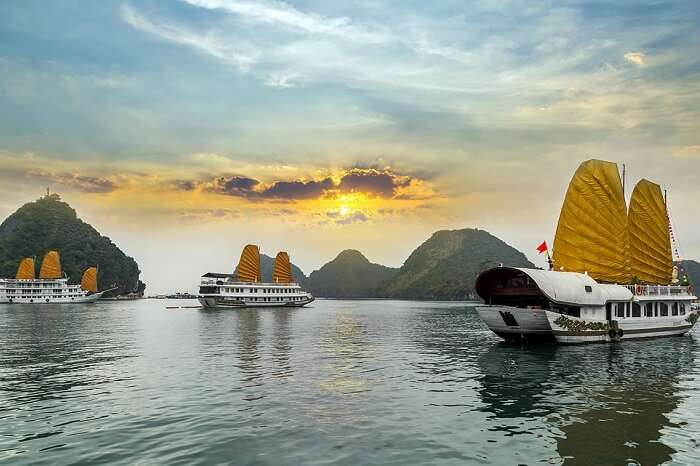 Cruises in Halong Bay during the day