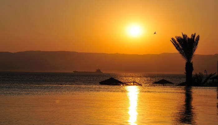 Witness a gorgeous sunset at Tala Bay