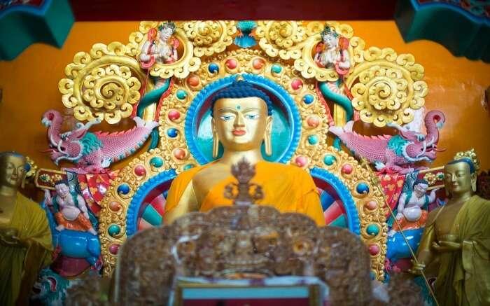 trip to Dharamshala