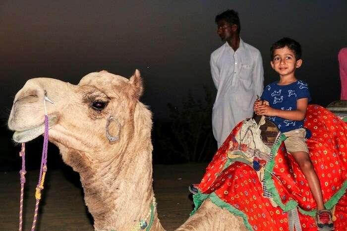 shri ram getting ready for a morning camel ride