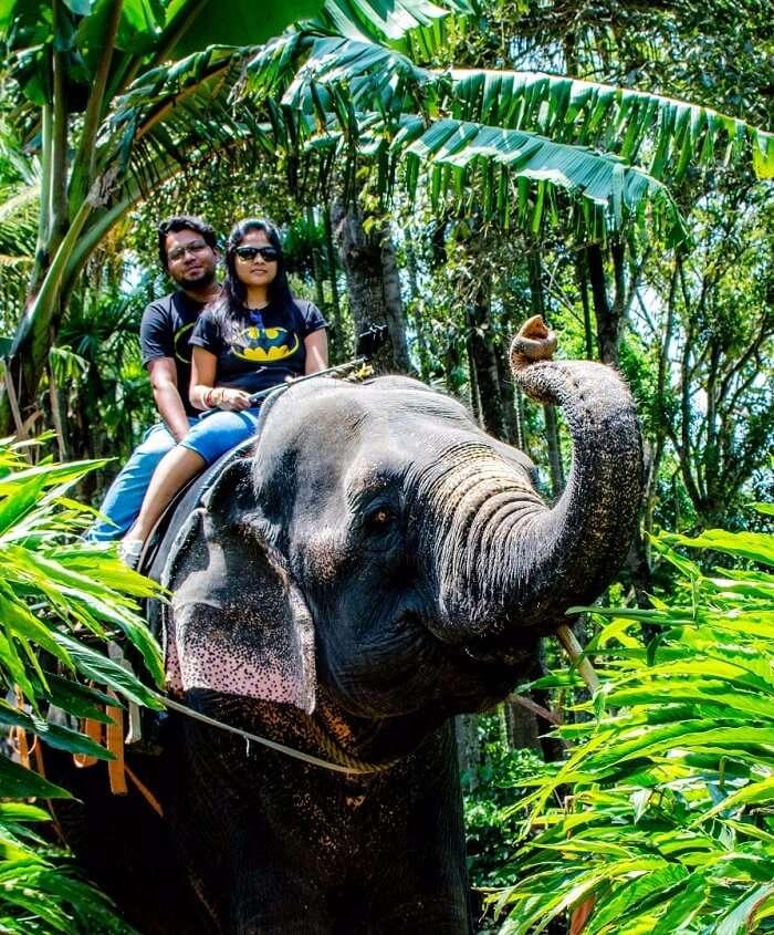 couple enjoying elephant ride in Kerala