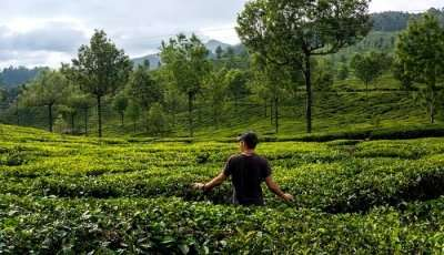 natural attractions in Kerala