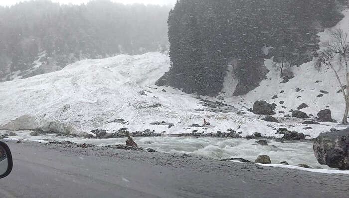 enroute glacier point