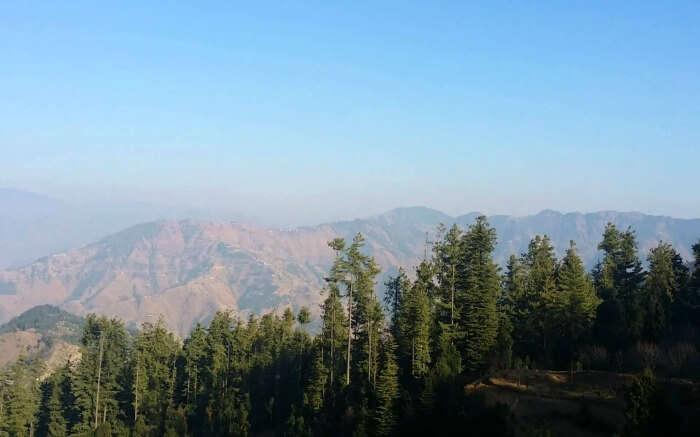 Mashobra hills in Himachal