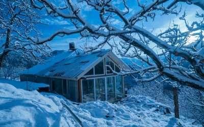 Meena Bagh Ratnari - an apple orchard in Kotkhai in Shimla