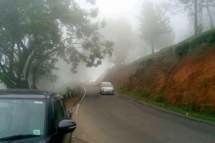 foggy day in munnar