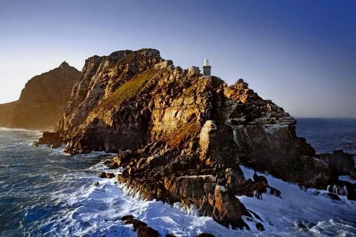 acj-3005-Cape Point Nature Reserve