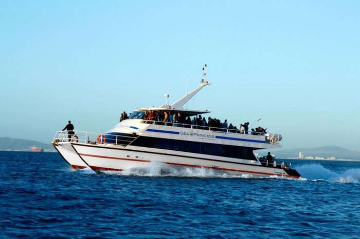 acj-3005-Cruise ride