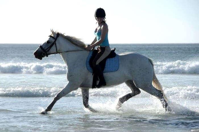 acj-3005-horse-ride