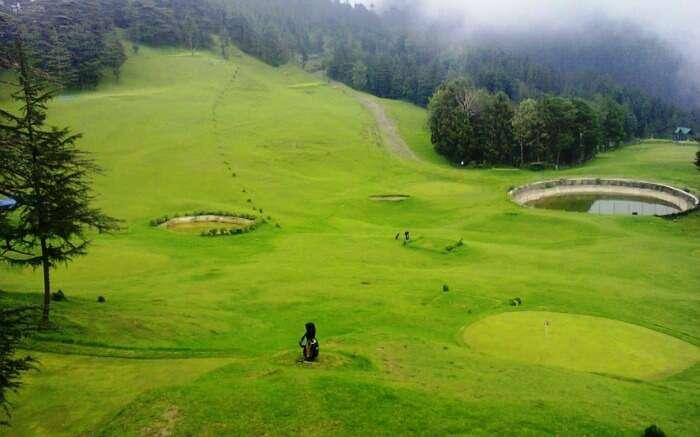 green meadow of Naldehra in Himachal