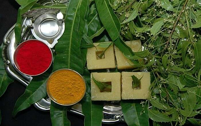 neem leaves and species for Ugadi festival