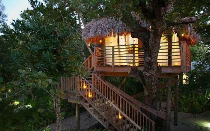 A hutlike tree house resort in Jamaica