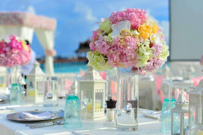 Chicest Resorts_ Enjoy The Luxury & Comfort