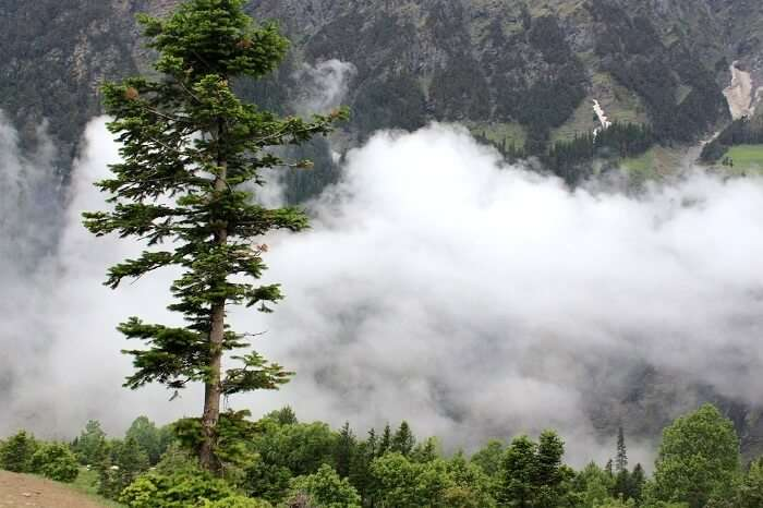 cloudy weather in manali