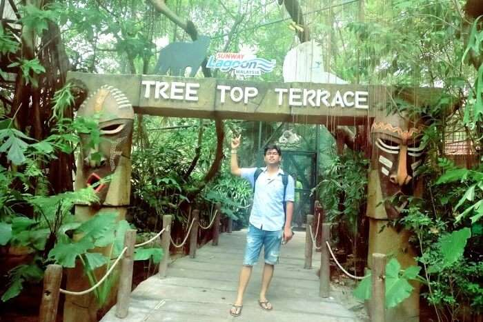 attractions at wildlife park