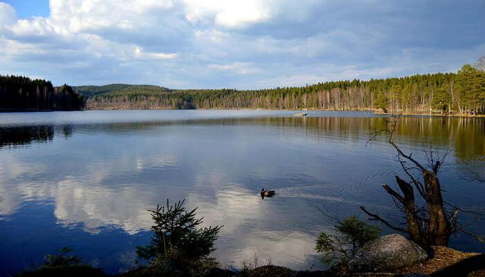 Sognsvann Lake in Norway