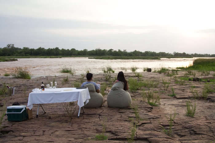 Incredible Safari Honeymoon In India