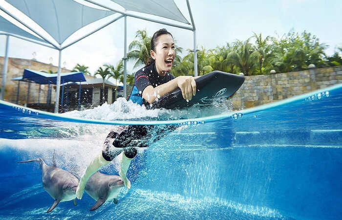 Dolphin Island in Resorts World Sentosa