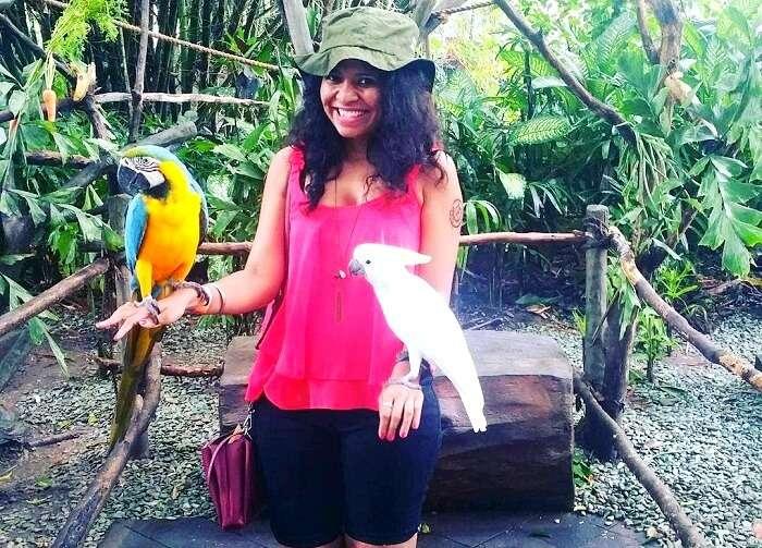 birds in Bali