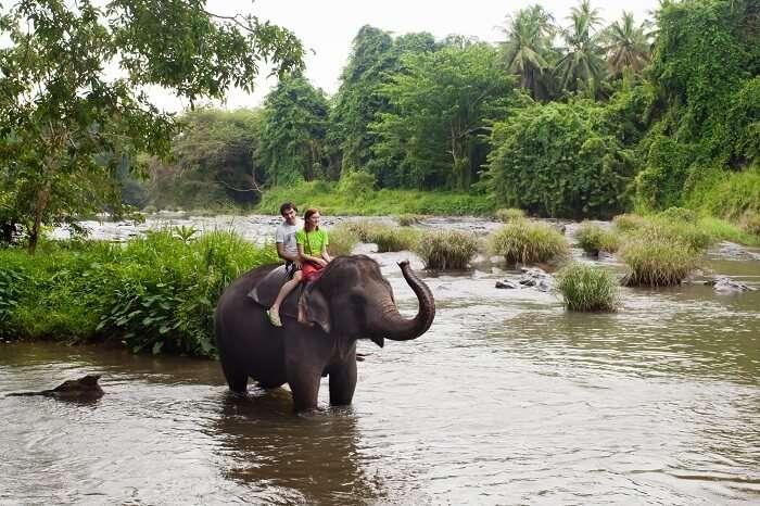 enjoy a adventure packed honeymoon in sri lanka