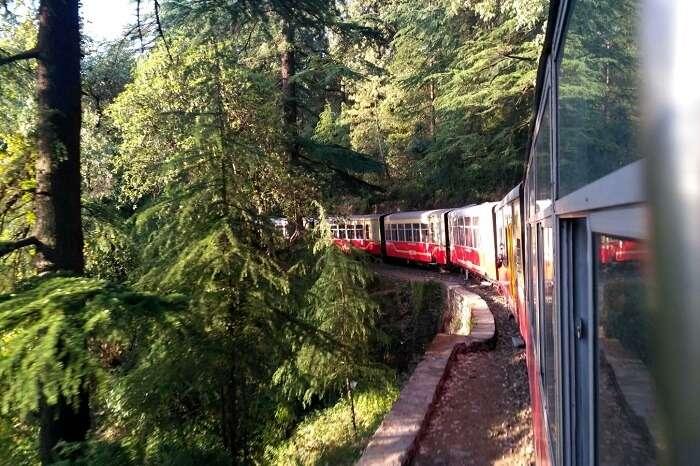 shish enjoying scenic views from kalka shimla train