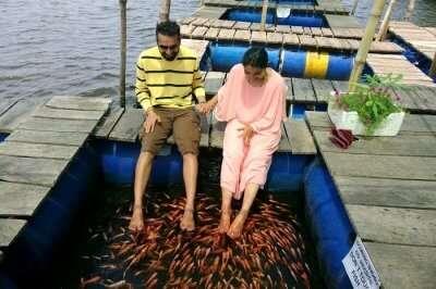 fish therapy in bentota