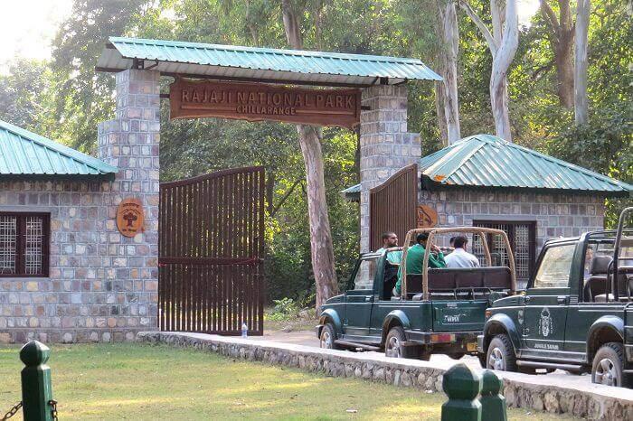 Rajaji National Park_22nd oct