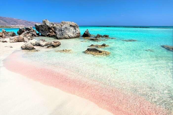 pink corals at elafonissi